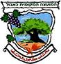 المجلس المحلي كابول